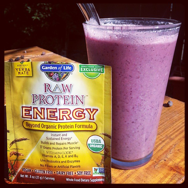 Garden of Life Raw Protein Energy