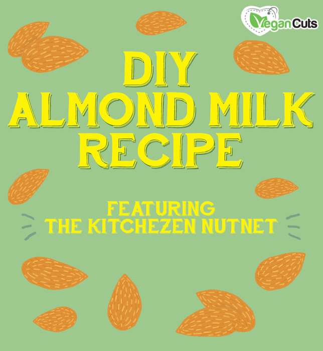 DIY Alomnd Milk Recipe